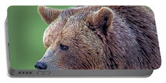 Brown Bear 5 Portable Battery Charger