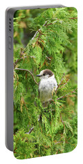 Camprobber - The Gray Jay Portable Battery Charger