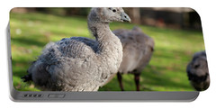 Cape Barren Goose And Geese Portable Battery Charger
