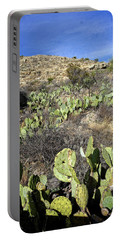 Desert Country Portable Battery Charger