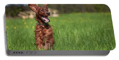 Happy Setter Portable Battery Charger