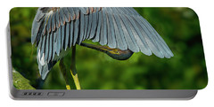 Preening Reddish Heron Portable Battery Charger