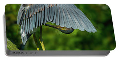 Portable Battery Charger featuring the photograph Preening Reddish Heron by Donald Brown
