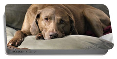 Portable Battery Charger featuring the photograph Reba by Rosanne Licciardi