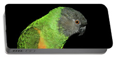 Portable Battery Charger featuring the photograph Senegal Parrot by Debbie Stahre
