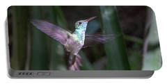 Versicolored Emerald Hummingbird Hovers Portable Battery Charger