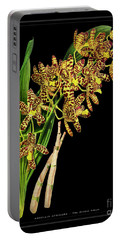 Vintage Orchid Print On Black Paperboard Portable Battery Charger
