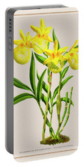 Orchid Vintage Print On Colored Paperboard Portable Battery Charger