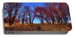 Portable Battery Charger featuring the photograph Autumn Light by David Patterson