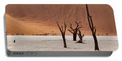 Deadvlei Desert Portable Battery Charger