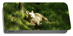 20/06/14  Keswick. Lamb In The Woods. Portable Battery Charger