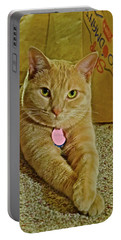 2018 Sunny Cat Listening To Year's End Political Analysis Portable Battery Charger