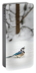 2019 First Snow Fall Portable Battery Charger
