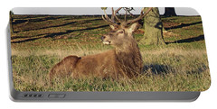 28/11/18  Tatton Park. Stag In The Park. Portable Battery Charger