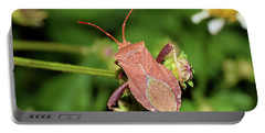Leaf Footed Bug Portable Battery Charger