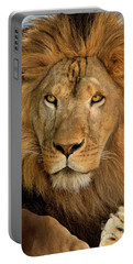 Portable Battery Charger featuring the photograph 656250006 African Lion Panthera Leo Wildlife Rescue by Dave Welling