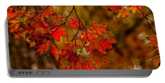 A Branch Of Autumn Portable Battery Charger