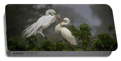 A Couple Of Birds Portable Battery Charger