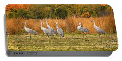 A Dance Of Cranes Portable Battery Charger