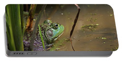 A Frog Waits Portable Battery Charger