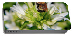 A Fuzzy Buzzy Portable Battery Charger