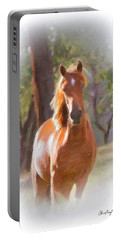 A Horse Portable Battery Charger