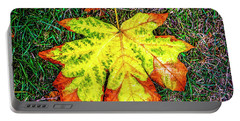 A New Leaf Portable Battery Charger