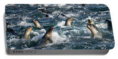 A Raft Of Sea Lions Portable Battery Charger
