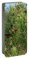 Portable Battery Charger featuring the photograph A Swarm Of Queens by Gaelyn Olmsted