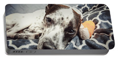 Abbey And Her Injured Paw Portable Battery Charger