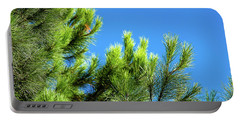 Adriatic Pine Against Blue Sky  Portable Battery Charger