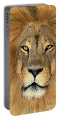 Portable Battery Charger featuring the photograph African Lion Portrait Wildlife Rescue by Dave Welling