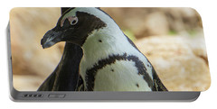 African Penguins Posing Portable Battery Charger