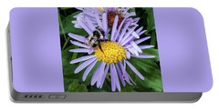 Portable Battery Charger featuring the photograph Alpine Aster At Glacier National Park by Lon Dittrick