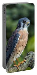 American Kestrel 9251501 Portable Battery Charger