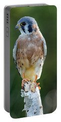 American Kestrel 9251502 Portable Battery Charger