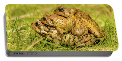 American Toad Western Brooke Pond, Grose M Portable Battery Charger