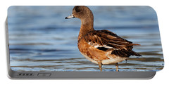 American Wigeon Standing Alert Portable Battery Charger