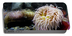 Anemone Portable Battery Charger