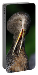 Anhinga Combing Feathers Portable Battery Charger