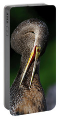 Portable Battery Charger featuring the photograph Anhinga Combing Feathers by Donald Brown