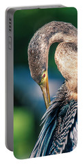 Portable Battery Charger featuring the photograph Anhinga Grooming by Donald Brown