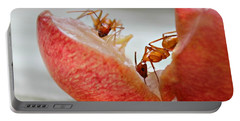 Ants Portable Battery Charger