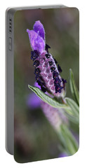 Spring Is Smelling Purple Lavender Portable Battery Charger
