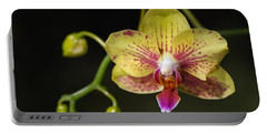Green And Reddish Orchid Portable Battery Charger