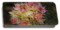 Small Cluster Proteas Portable Battery Charger