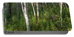 Portable Battery Charger featuring the photograph Aspen Solitude by Lon Dittrick