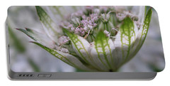 Astrantia Portable Battery Charger