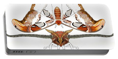 Atlas Moth2 Portable Battery Charger