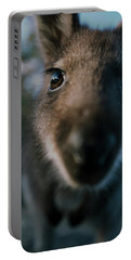 Australian Bush Wallaby Outside During The Day. Portable Battery Charger